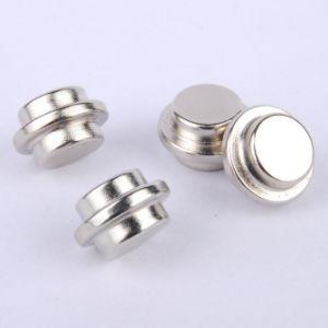 Neodymium Magnet pictures & photos