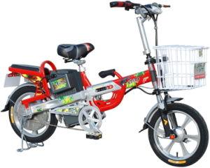 E-Bike (Lead-Acid Battery)
