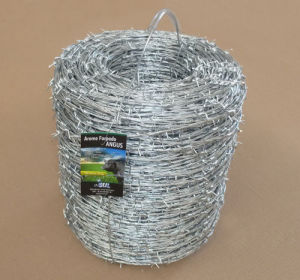 12ga X 12ga Hot Dipped Galvanized Barbed Wire pictures & photos