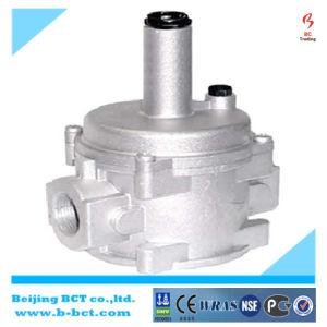 1bar Dn15 Aluminum Nature Gas Regulator Without Gauge, GAS valve BCTR01 pictures & photos