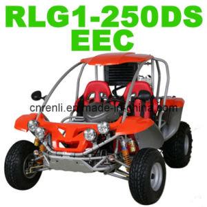 250CC EEC Buggy (RLG1-250DS)