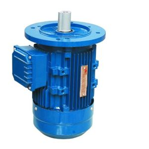 Ms Series (1/4 ~ 10HP) Tefc- Aluminum Frame Three Phase Motor, AC Motor pictures & photos