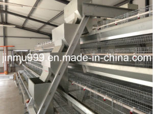 Chicken Cage System 120 Birds/Set pictures & photos