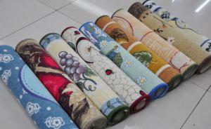 Cotton Printed Anti-Slip Door Mat/Rugs #4, Super Water Absorbing pictures & photos