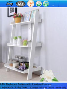 SGS ISO Classical Graceful Flower Mobile Shelving