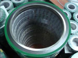 Spiral Wound Gasket with Inner Ring and Outer Ring (RS-5001) pictures & photos