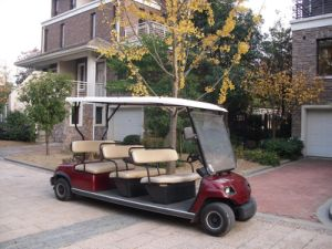 8 Seats Sightseeing Car pictures & photos