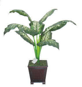 Artificial Plants Potted