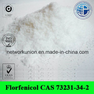 Florfenicol CAS 73231-34-2 Veterinary Medicine Powder Florfeniol pictures & photos