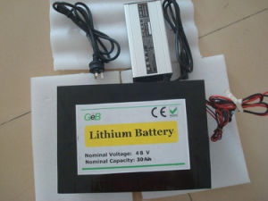 Lithium Battery 48V30Ah (GEB4830)