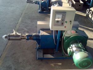 Horizontal Pump pictures & photos