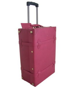 Genuine Leather Luggage (TT001LE)