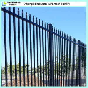 Galvanized and Powder Coated Iron Fencing pictures & photos