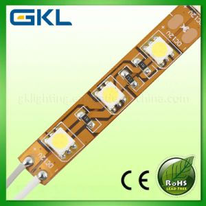 SMD5050 LED Strip (SMD5050)