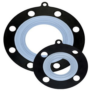 EPDM PTFE Gasket pictures & photos