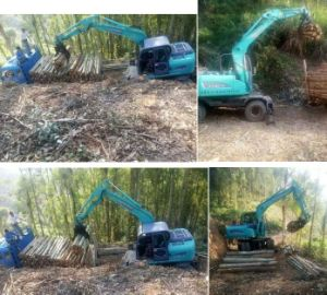 Rhinoceros Sugarcane Loader Sugar Cane Loader Wheel Excavator for Sale 8ton 12ton pictures & photos