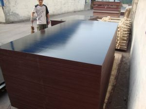 Black Film Faced Plywood China/Building Material/Wood/MDF/Plywood