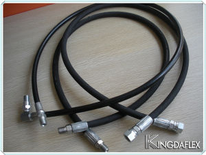 High Pressure Hydraulic Hose with Hose Fittings Assembly pictures & photos