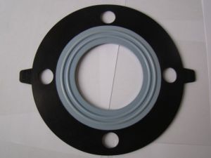 Rubber Gasket with Teflon Clad pictures & photos