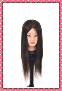 Mannequin Head Natural Human Hair Training Head 20inches for Style pictures & photos