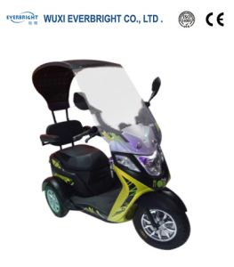 Good Selling 60V 500W Electric Passenger Motor Vehicle pictures & photos