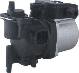 Boiler Pump (TPW-2518ALG) pictures & photos