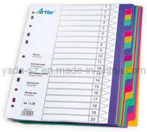 Colour PP Divider pictures & photos