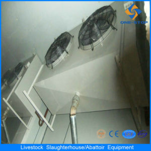 Cheap Price Custom Supreme Quality Freezer Chilling Cold Storage Cold Room pictures & photos