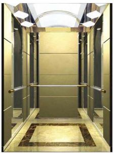 AC-Vvvf Drive Home Lift/Elevator with German Technology (RLS-212) pictures & photos