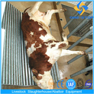 Cow Slaughter Equipment with Slaughterhouse Design pictures & photos
