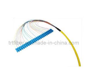 Fiber Pigtail Om3 50/125 Multimode 24-Fiber Distribution Fiber Optic Pigtail pictures & photos
