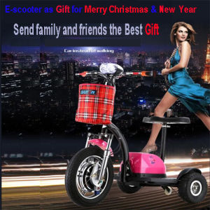 France Three Wheels Electric Scooter with Factroy Price pictures & photos