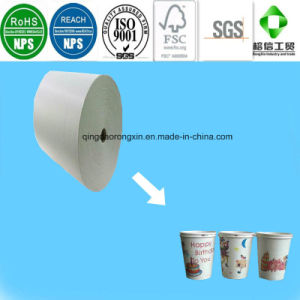 Double Side PE Coated Paper in Roll or in Sheet for Cups pictures & photos