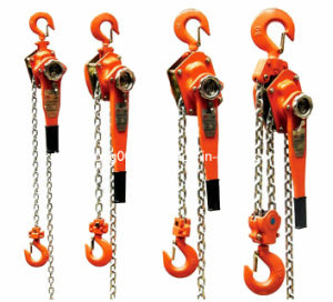 Chain Block Manual Hoist 300kg 400kg 500kg pictures & photos