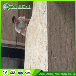 Good Quality OSB (oriented strand board) pictures & photos