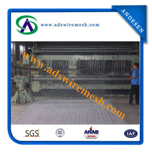 Rise The Land 80X100mm Mesh Galvanized Gabion Box pictures & photos