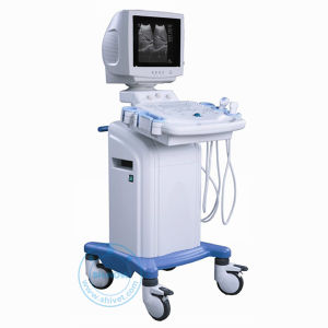 Trolley Digital Ultrasound Scanner (3D Optional) (Win 300V) pictures & photos