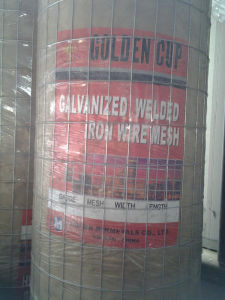 Hot Dipped Galvanized Welded Wire Mesh for Philippines Market pictures & photos