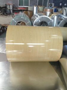 Prepainted Steel Coil of Flower Designs pictures & photos