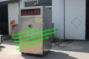 Electric Smokehouse Smoke Oven for Fish Sausage Meat pictures & photos