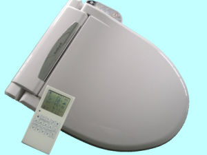 China electric bidet toilet seat combination toilet bidet - Japanese toilet bidet combination ...