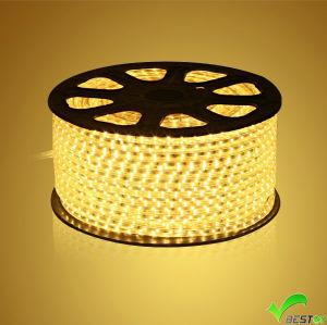 3528 SMD LED Single Color LED Flexible Strip Light