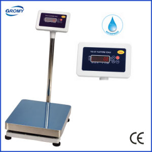 Waterproof Scale Steel Plastict Structure Scale 300kg pictures & photos