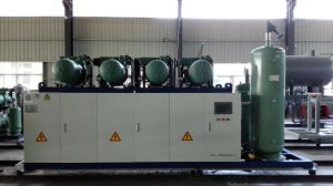 Bitzer Low Temperature Screw Parallel Unit Refrigeration Compressor pictures & photos