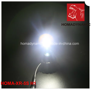 30W COB Chip LED Headlight for Car Motorcycle SUV Headlight pictures & photos