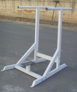 Fitness Equipment/Gym Equipment/Dipping Bars (SW-8015) pictures & photos