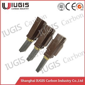 Low Noise Carbon Brush for Vacuum Cleaner and Carbon Brush Holder pictures & photos