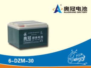 12V30ah Motorcycle Battery E-Bike Battery