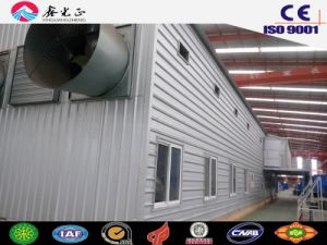Layer Poultry Shed in Angola with Equipment (SSW-14329) pictures & photos