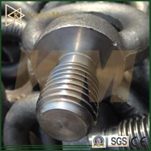 Carbon Steel Drop Forged Eye Bolt (DIN 580) pictures & photos